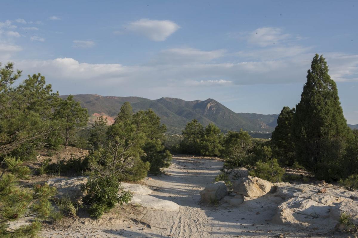 Ute Valley Park - Colorado Springs Real Estate Guy